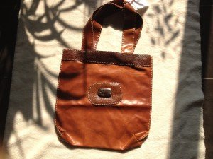 IMG_0179-300x225 sacs en cuir végétal dans environnement