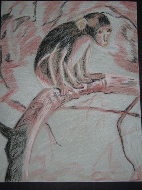 Miquinhos le singe est triste - Dessin guenon ...
