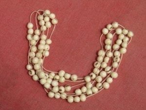 img_2532-300x225 dans colliers d'Amazonie