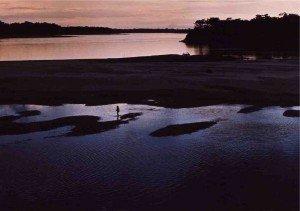 nuit d'Amazonie paysage1-300x211