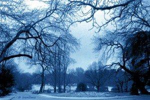 © ivanlima 0054_30 Paris parque MontSouris janeiro de 1979 azul+ciano