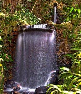 cascade Jardin Botanique