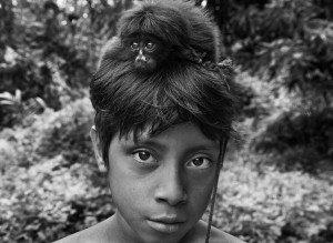Les Awa élèvent de petits animaux orphelins comme animaux de compagnie. Une fois grands ils retournent dans la forêt. Sebastião Salgado 2013