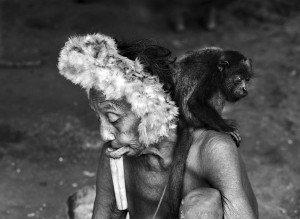 """Les Zo'"""" adoptent souvent des oiseux, des singes ou des tortues comme animaux de compagnie. Etat du Para - mars, avril 2009"""